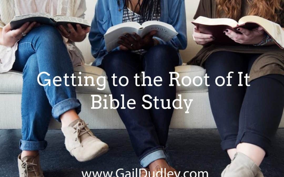 Getting to the Root: Bible Study